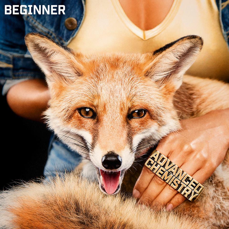 Beginner-Advanced-Chemistry-Cover