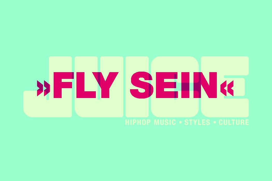 fly-sein-2