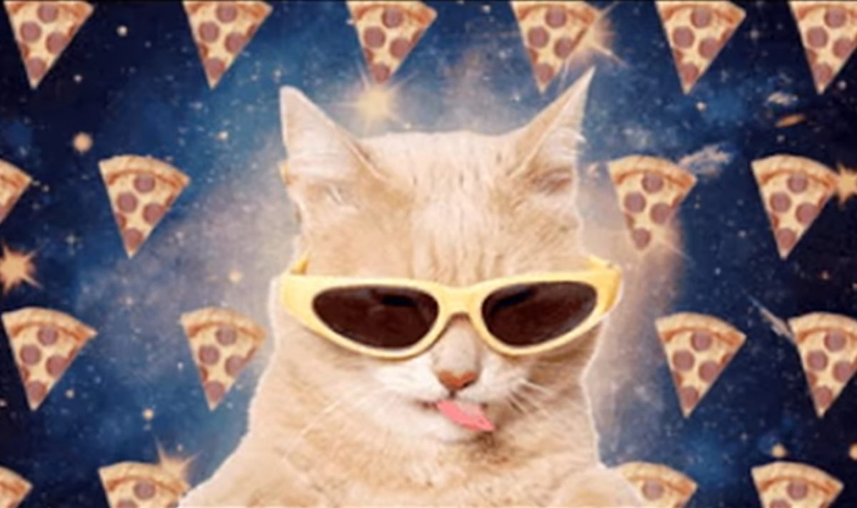 meow_the_jewels_all_meow_life