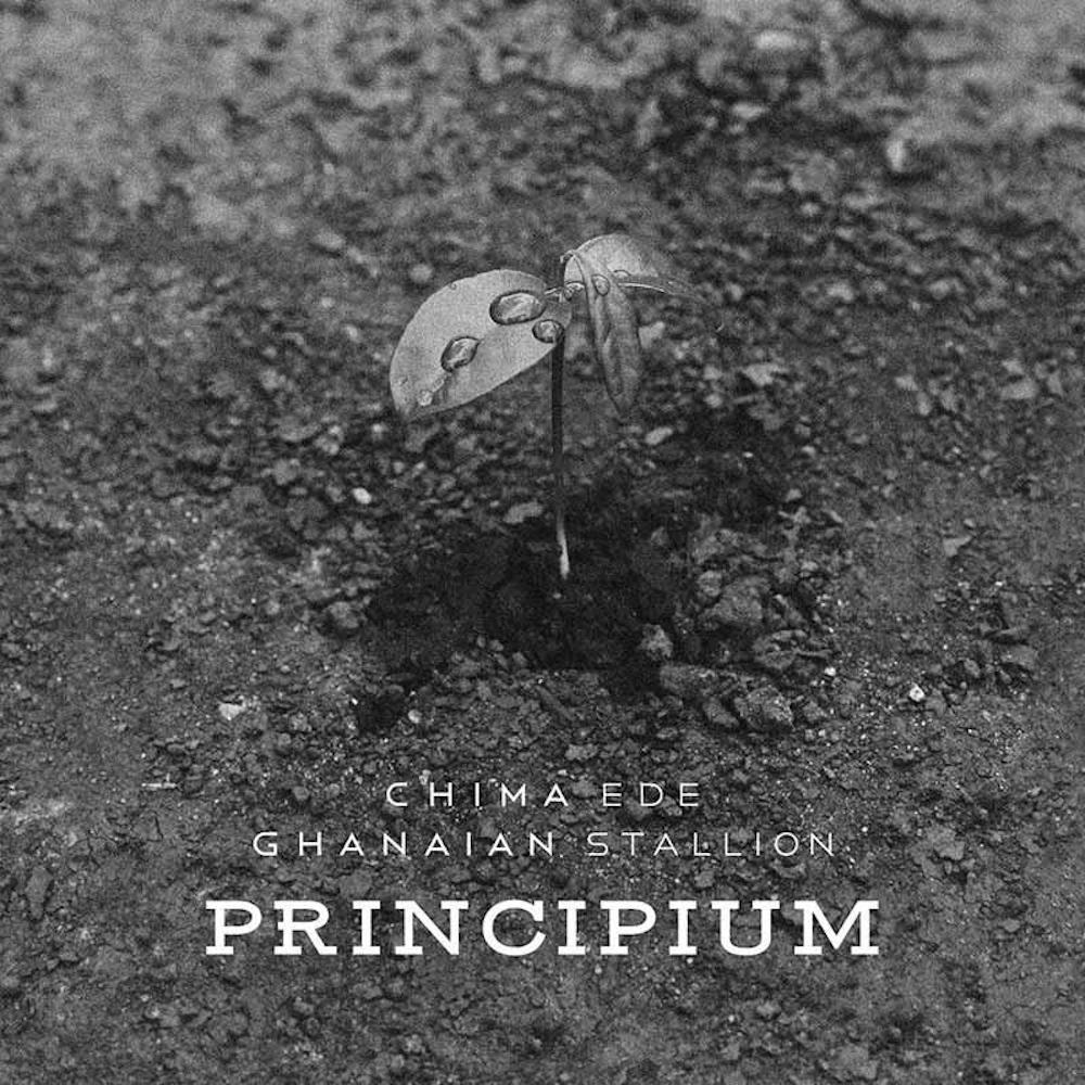 principium_cover_